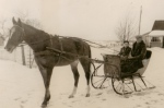 Horse and drivingsleigh