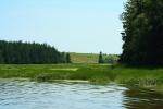 On the Clyde River – marshland nearbridge