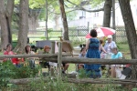 Art in the Park 20122