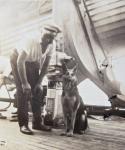 German prisoner anddog