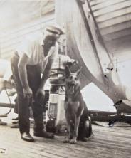 German prisoner and dog